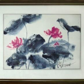 黃哥川-蓮花